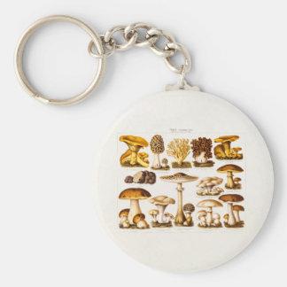 Vintage 1800s Mushroom Variety  Mushrooms Template Keychain