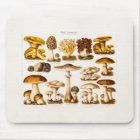 Vintage 1800s Mushroom Variety  Mushrooms Template Mouse Pad
