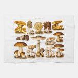 Vintage 1800s Mushroom Variety  Mushrooms Template Towel