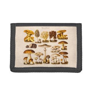 Vintage 1800s Mushroom Variety  Mushrooms Template Tri-fold Wallets