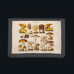 """Vintage 1800s Mushroom Variety  Mushrooms Template Trifold Wallet<br><div class=""""desc"""">Wallet - Customized Wallets Template Blank Customized Wallet - Personalize with your own names, pattern, design, quotes, monograms, or photographs. Use our cool template, artwork, photo, graphic, or illustration, then add a name, text, quote, or monogram to create your own custom wallets. Click the &quot;Customize it!&quot; button to make it...</div>"""