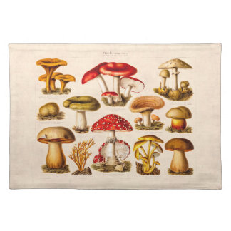 Vintage 1800s Mushroom Variety Red Mushrooms Cloth Placemat