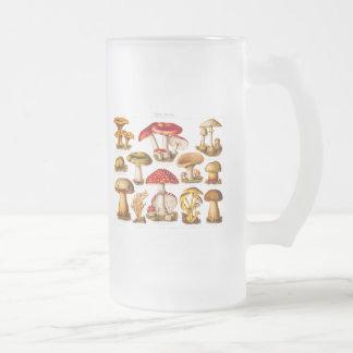 Vintage 1800s Mushroom Variety Red Mushrooms Frosted Glass Beer Mug