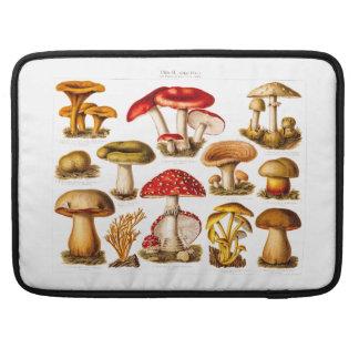 Vintage 1800s Mushroom Variety Red Mushrooms Sleeves For MacBooks