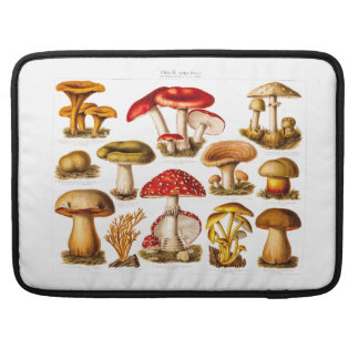 Vintage 1800s Mushroom Variety Red Mushrooms Sleeve For MacBooks