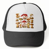 Vintage 1800s Mushroom Variety Red Mushrooms Trucker Hat