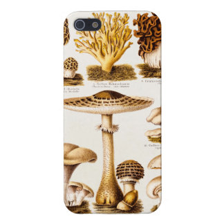 Vintage 1800s Mushroom Variety Template Case For iPhone SE/5/5s