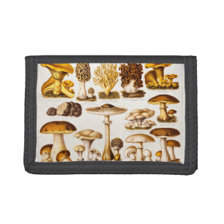 Vintage 1800s Mushroom Variety Template Trifold Wallets