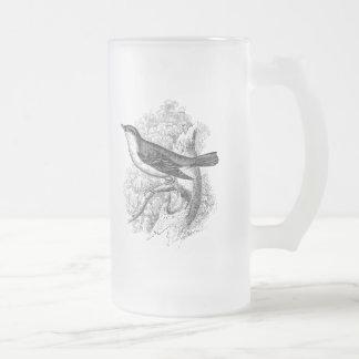 Vintage 1800s Nightingale Bird Illustration Birds Frosted Glass Beer Mug