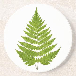 Vintage 1800s Olive Green Fern Leaf Template Drink Coaster