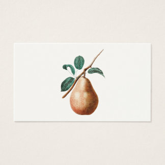 Vintage 1800s Pear Fruit Branch w Leaves - Pears Business Card