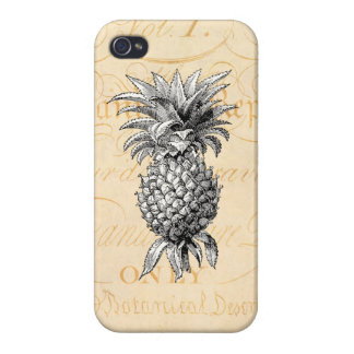 Vintage 1800s Pineapple Illustration Botany Covers For iPhone 4