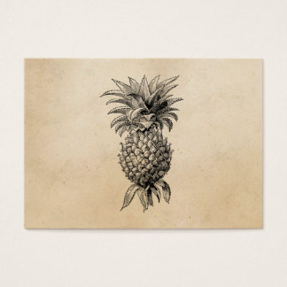 Vintage 1800s Pineapple Illustration Pineapples Business Card