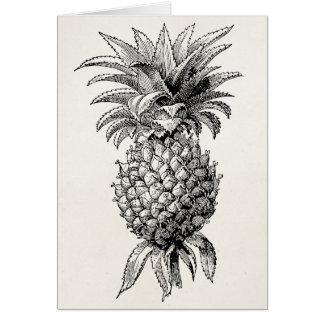 Vintage 1800s Pineapple Illustration Pineapples Card