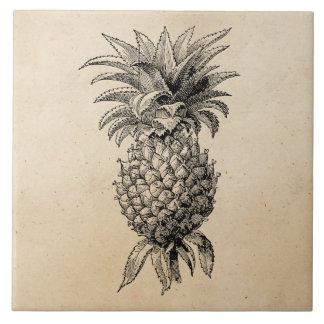 Vintage 1800s Pineapple Illustration Pineapples Ceramic Tile