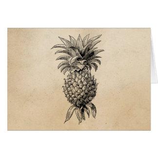 Vintage 1800s Pineapple Illustration Pineapples Greeting Card