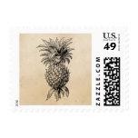 Vintage 1800s Pineapple Illustration Pineapples Postage Stamps