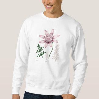 Vintage 1800s Pink Dahlia Flower Dahlias Floral Sweatshirt