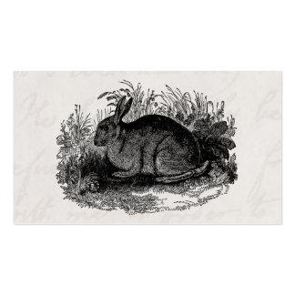 Vintage 1800s Rabbit Retro Bunny Template Rabbits Business Card