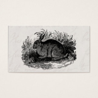 Vintage 1800s Rabbit Retro Bunny Template Rabbits Business Card