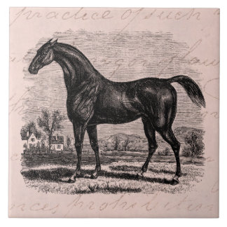 Vintage 1800s Race Horse Retro Thoroughbred Horses Ceramic Tile