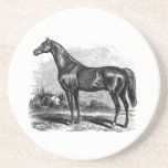 Vintage 1800s Race Horse Retro Thoroughbred Horses Coasters