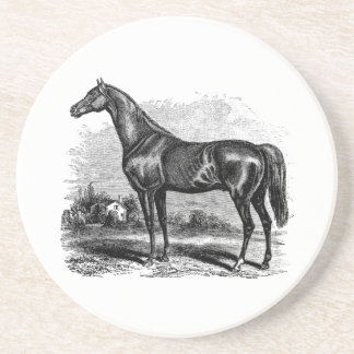 Vintage 1800s Race Horse Retro Thoroughbred Horses Drink Coaster