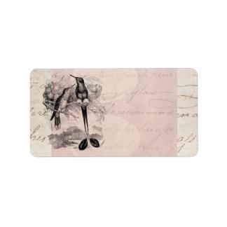 Vintage 1800s Racket-Tail Hummingbird Racquet Tail Label