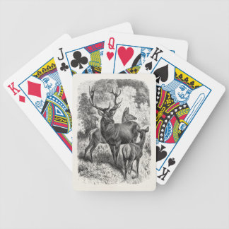 Vintage 1800s Red Deer Illustration Stag Doe Fawn Bicycle Playing Cards