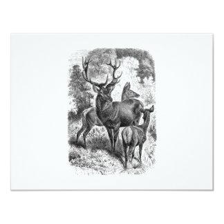 "Vintage 1800s Red Deer Illustration Stag Doe Fawn 4.25"" X 5.5"" Invitation Card"