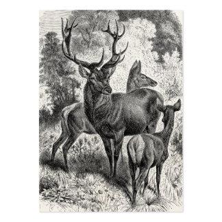 Vintage 1800s Red Deer Illustration Stag Doe Fawn Large Business Card