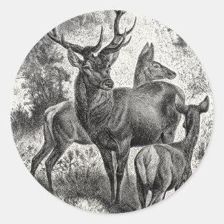 Vintage 1800s Red Deer Illustration Stag Doe Fawn Sticker