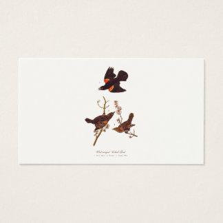 Vintage 1800s Red Winged Black Birds Illustration Business Card