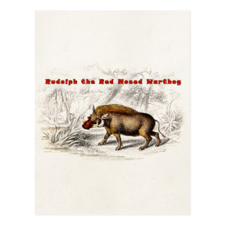 Vintage 1800s Rudolph the Red Nosed Warthog Post Cards