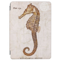 Vintage 1800s Sea Horse Ocean Seahorse Template iPad Air Cover