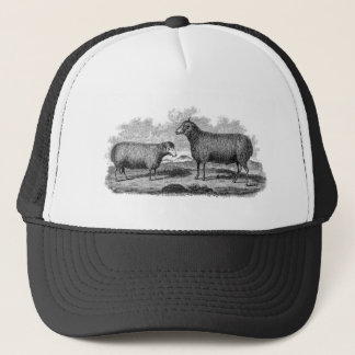 Vintage 1800s Sheep Ewe Illustration Retro Farm Trucker Hat