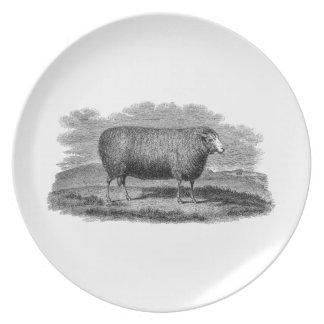 Vintage 1800s Sheep Ewe Illustration Retro Wool Party Plate