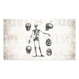 Vintage 1800s Skeleton Antique Anatomy Skeletons Business Cards