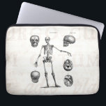 """Vintage 1800s Skeleton Antique Anatomy Skeletons Computer Sleeve<br><div class=""""desc"""">Customized Laptop Sleeve Neoprene 13&quot; - Custom Sleeves. Personalize with your own name, pattern, design, quote, monogram, or photograph. Use our cool templates, artwork, photos, graphics, and illustrations, then add names, text, quotes, and monograms to create your own laptop cover. Click the &quot;Customize it!&quot; button to make it personalized or...</div>"""