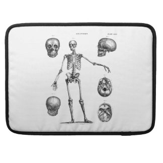 Vintage 1800s Skeleton Antique Anatomy Skeletons Sleeves For MacBook Pro