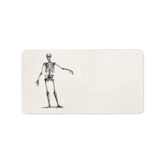 Vintage 1800s Skeleton Retro Anatomy Skeletons Personalized Address Labels