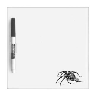 Vintage 1800s Spider Illustration Spiders Template Dry Erase Board