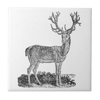 Vintage 1800s Stag Deer Antlers Retro Template Tile
