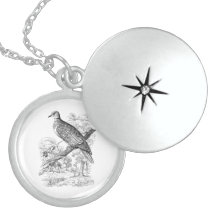 turtle vintage necklaces bird lockets pigeon doves silver dove zazzle necklace birds sterling