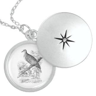 Vintage 1800s Turtle Dove Bird Doves Pigeon Birds Sterling Silver Necklace