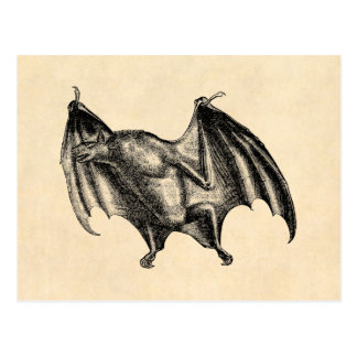Vintage 1800s Vampire Bat Illustration - Halloween Postcard