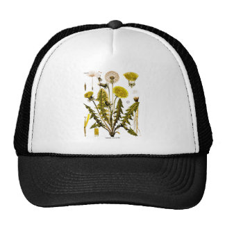 Vintage 1800s Yellow Dandelion Gone to Seed Floral Trucker Hat