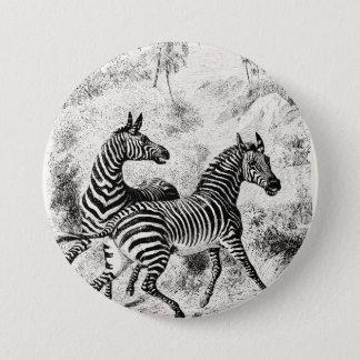 Vintage 1800s Zebras Retro Old Zebras Illustration Pinback Button