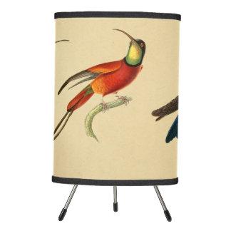 Vintage 1830 Hummingbird Lamp Shade