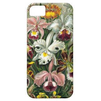 Vintage 1865 Botanical Orchids Illustration Case For iPhone 5/5S